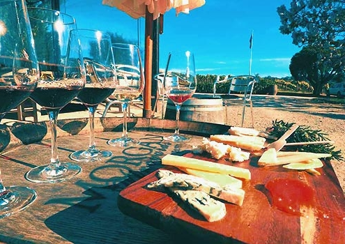 Wine-and-Cheese-Tasting-Seville
