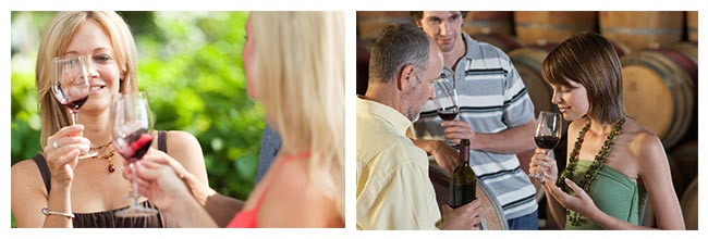 mornington wine tours
